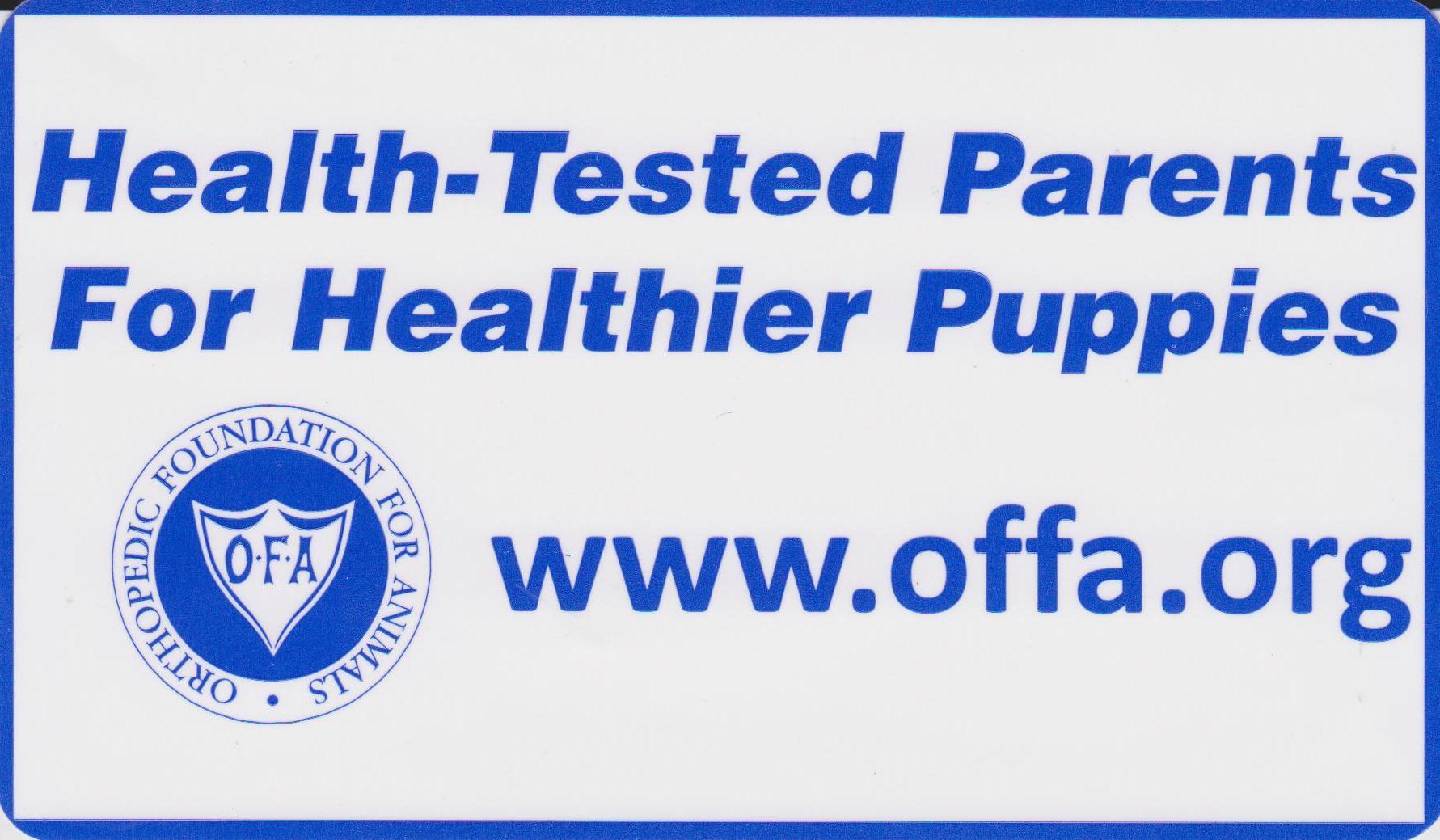 Judy Maassen dog breeder ofa testing