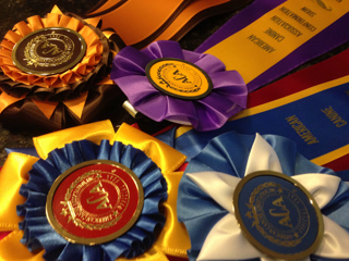 Judy Maassen dog breeder ACA dog show ribbons